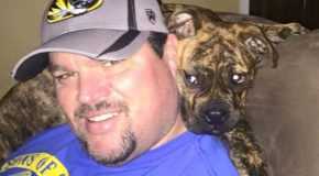 Argument over size of dog leaves one man dead in Missouri sports bar, reports say