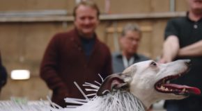 This very good dog in a funny suit helped Lucasfilm design a new Star Wars creature